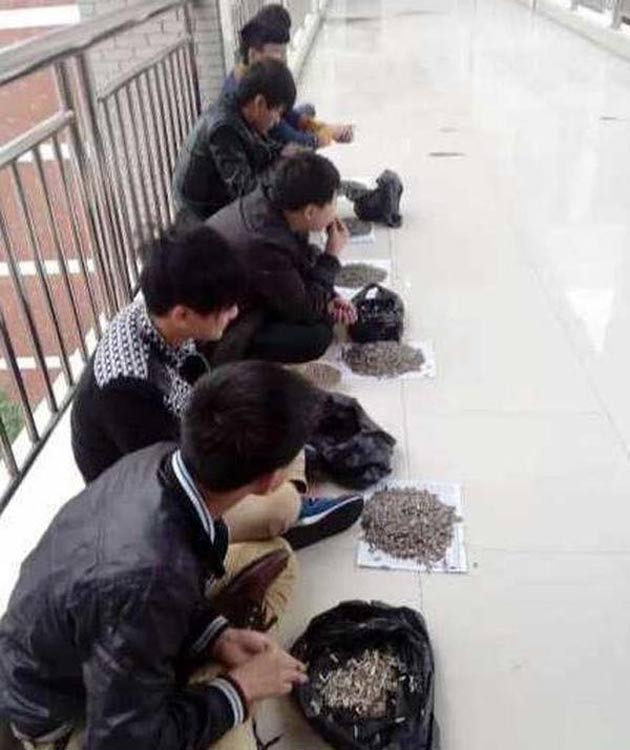 Chinastudents3