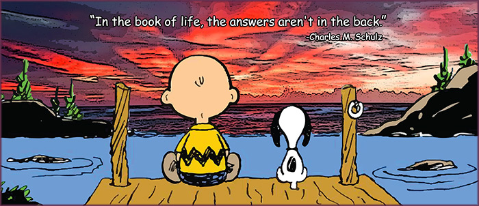 Charles m schulz life quotes