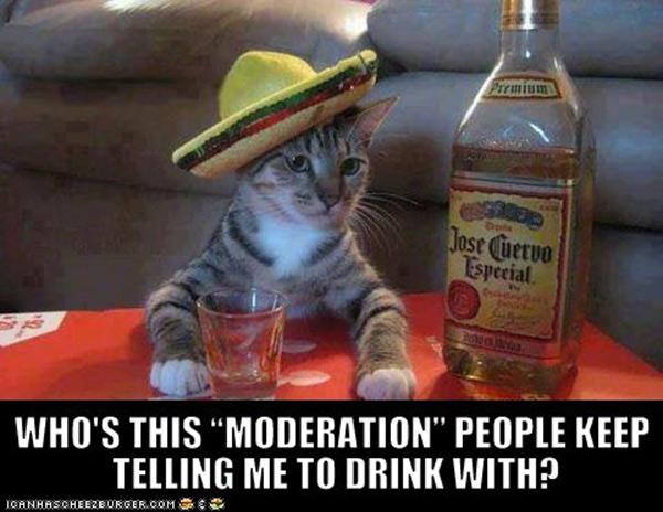 alcoholics-13