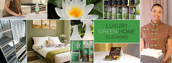Home Cleaning Nyc Green Eco Cleaning Consultants Launch