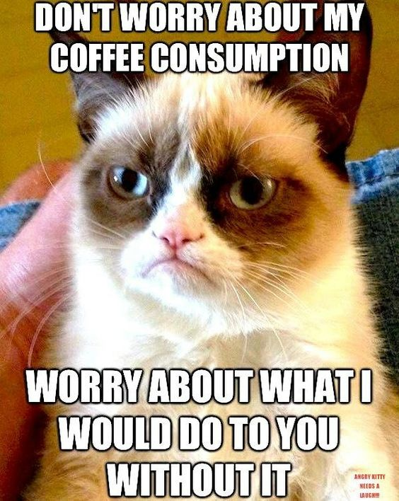 Funny Coffee Pictures
