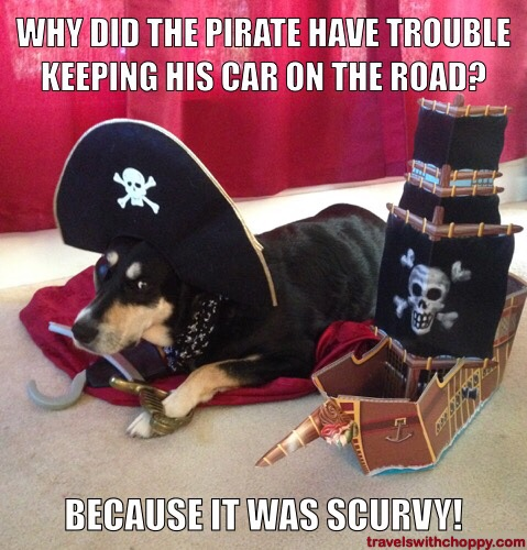 pirate meme funy image 27