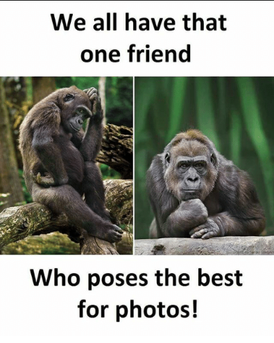We all have that one friend meme