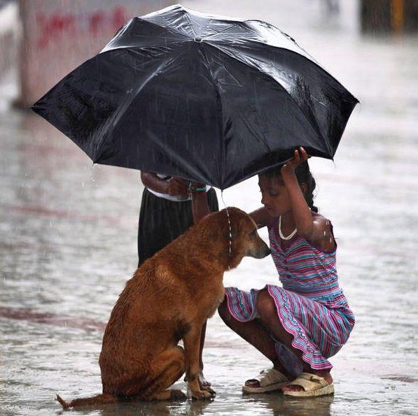 heartwarmingphoto