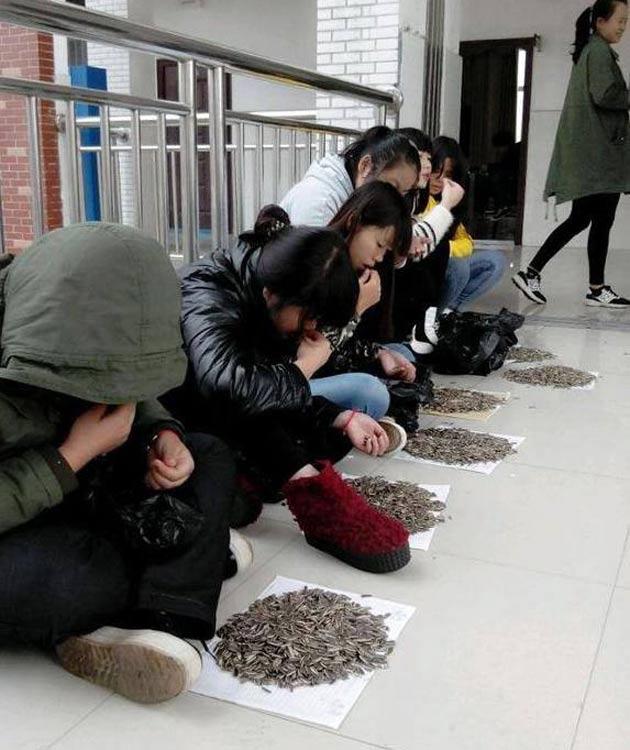 Chinastudents2