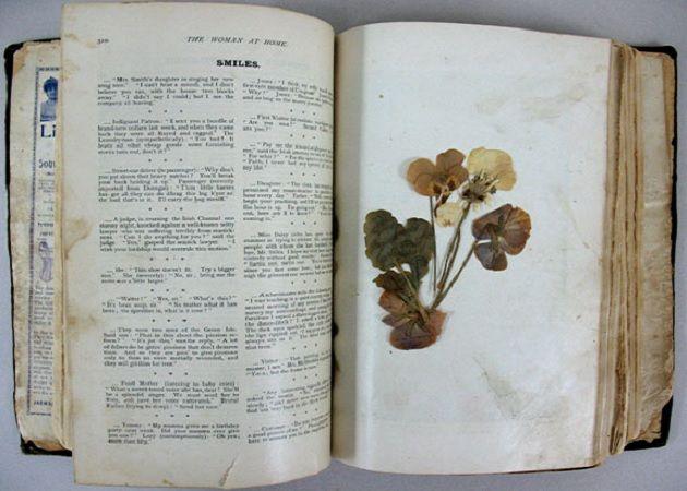 leafsinbooks
