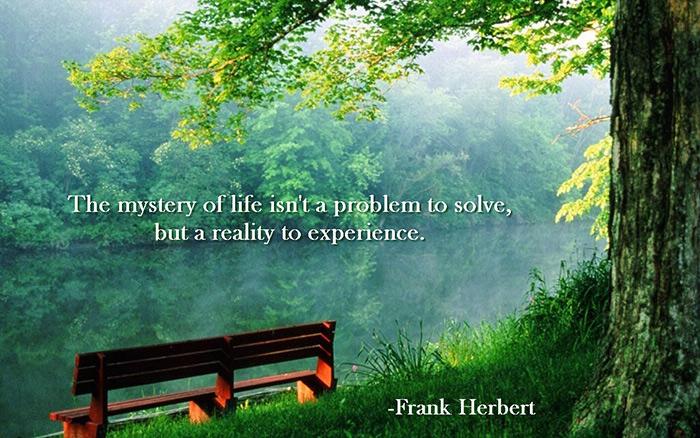 frank Herbert life quotes