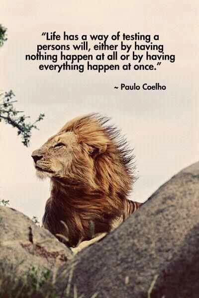 paulo coelho life quotes
