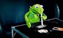 evil kermit frog meme