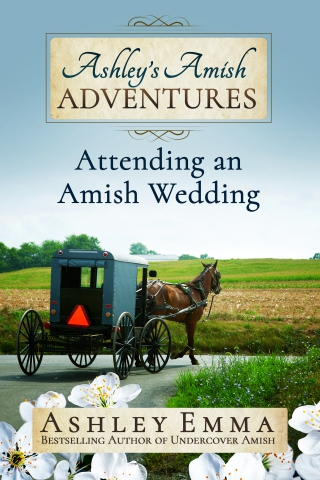 bestselling author ashley emma lives with amish families in maine and writes abo