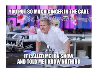 gordon ramsay insults