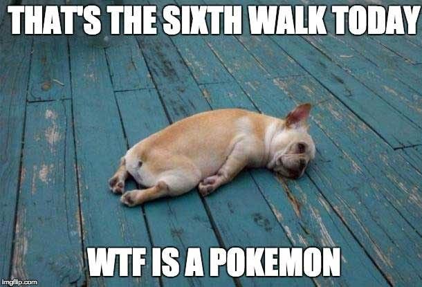 Funny Pokemon Go Memes