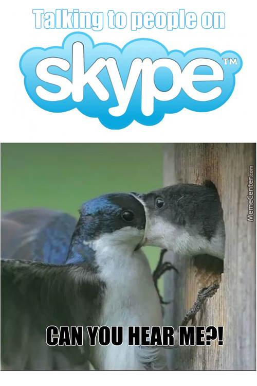 Funny Skype Pictures