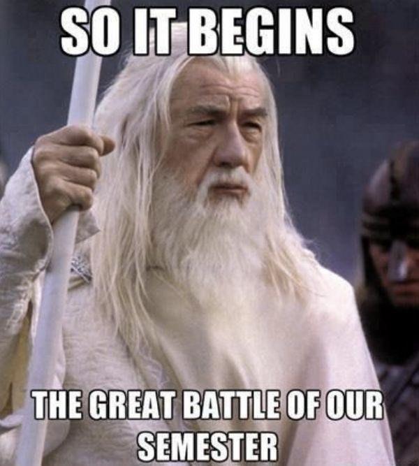 exam memes