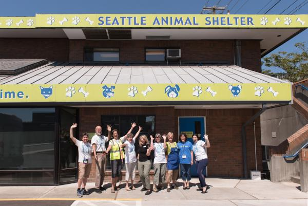 check out the animals up for adoption from seattle humane society amp this nataw