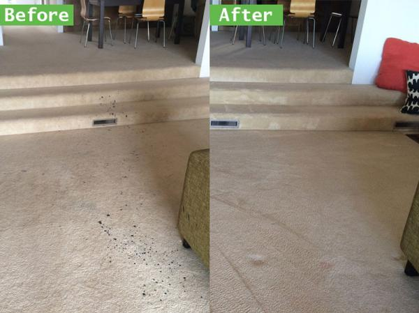 find out about the benefits of hiring temecula s top professional carpet cleanin