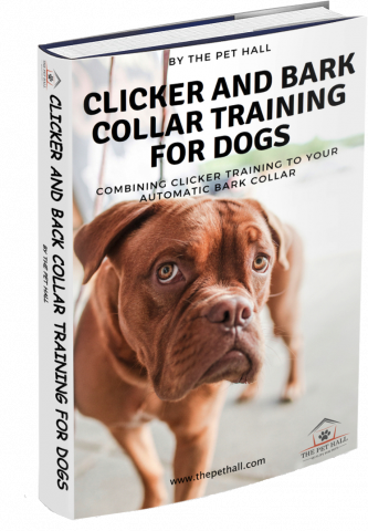 get the best painless dog bark collar for under 30 with its sound recognition au