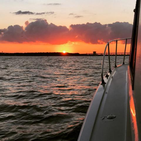 see dolphins amp enjoy picturesque sunsets with stunning boat tours amp yacht cr