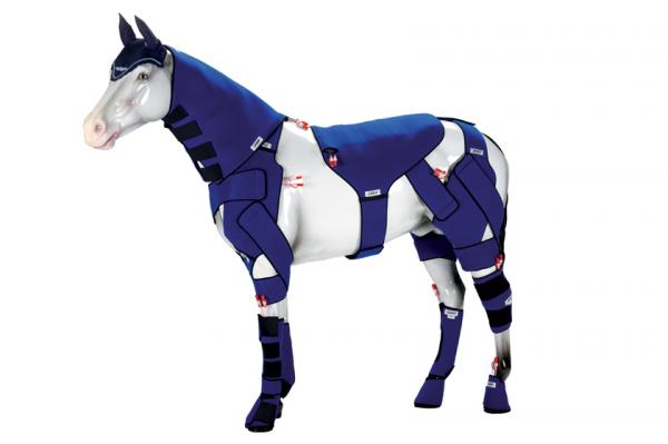 newmarket horse therapy products supplier introduces full leg amp neck wraps