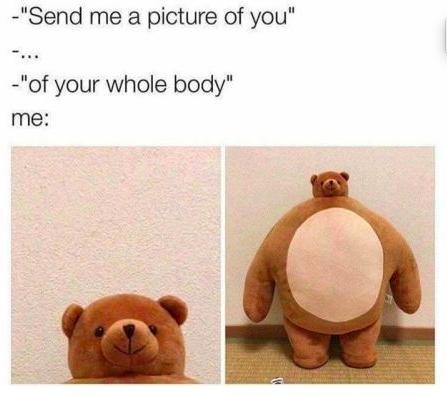 Send me a pic meme