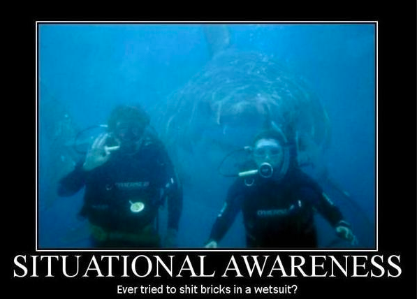 Situational Awareness meme