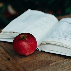 boston online education resource center vocabulary development strategies releas
