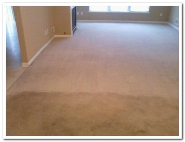hammond-munster-in-carpet-cleaning-water-extraction-dirt-removal