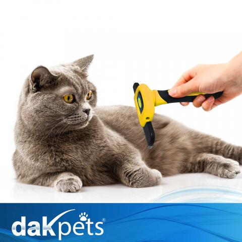 dakpets pet deshedding brush achieves the milestone of 15 000 reviews