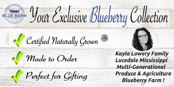 mississippi organic blueberry produce farmer launches gift ordering online