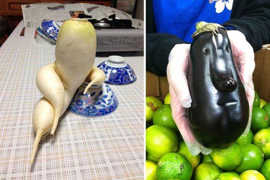 vegetable puns