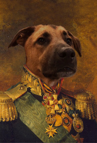 celebrate your pet with this custom historical themed portrait service