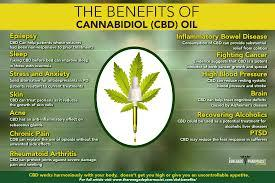 discover the health benefits of cbd for chronic pain depression amp autism