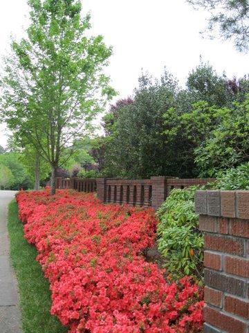 let advanced landscaping transform your new home in weaverville nc