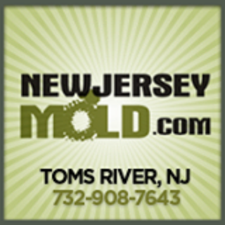manahawkin crawl space mold removal service with moldexterm system eliminates mo