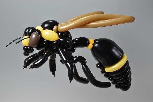 twisted balloon art creations