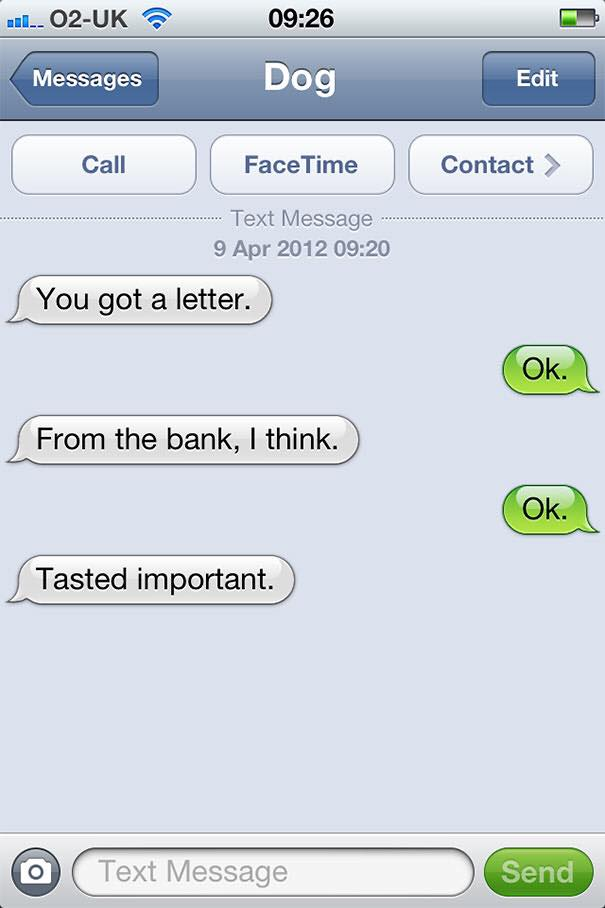 funny dog text messages